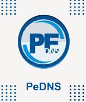 آیکون نرم افزار PeDNS